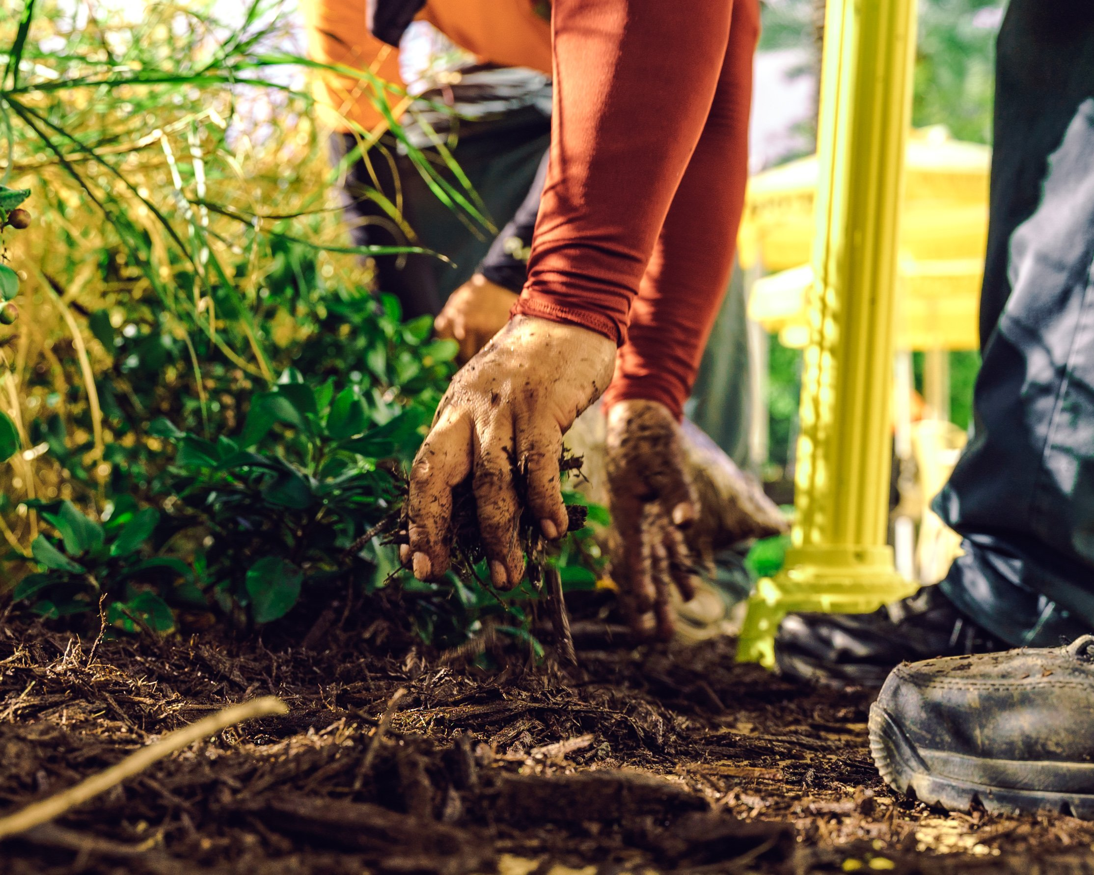 Landscaping as an Essential Service